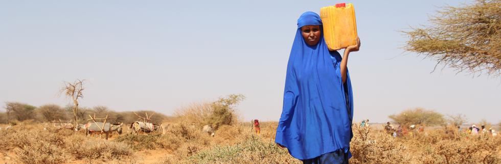 Drought-hit Somalia one step closer to famine