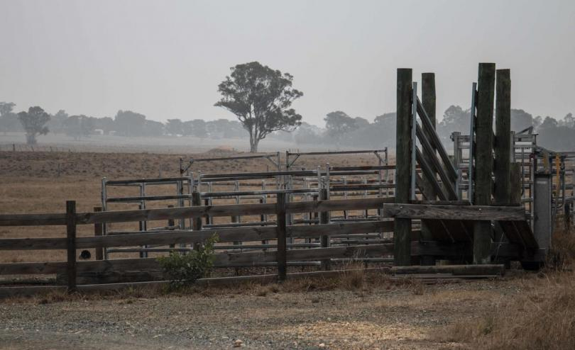 Smoke from the bushfires in Australia continues to blanket parts of Victoria and New South Wales