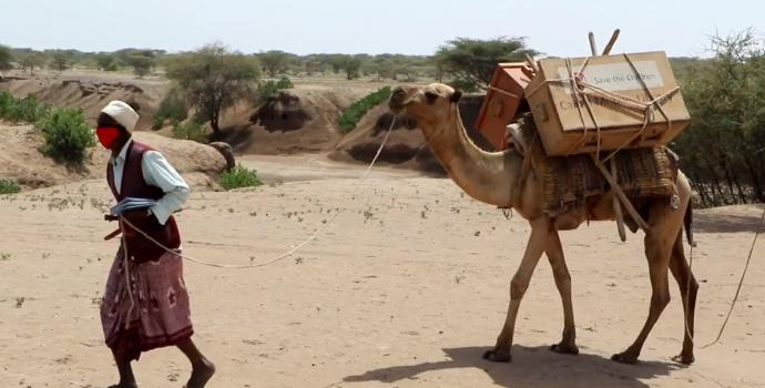 Covid-19: a camel library takes remote learning to new levels