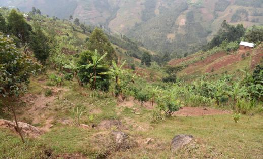 The remains of a house that was destroyed in a landslide, on a hillside in Burundi