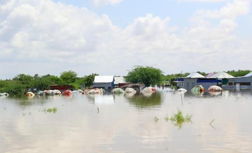 Shabelle River floods, Beledweyne town in Somalia
