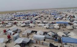 Repatriation of foreign children in Syria