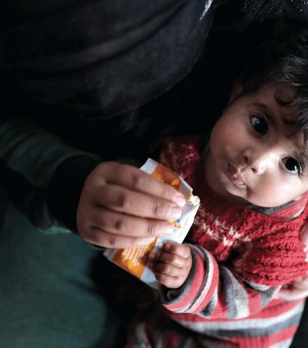 The Hunger Crisis